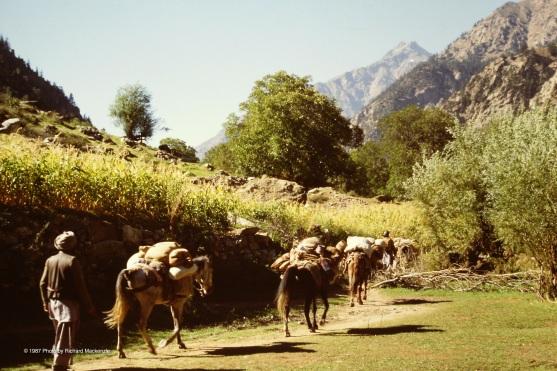 Traveling through Nuristan.