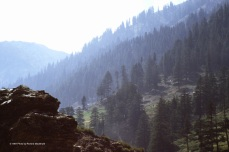 Early morning mist enshrouds a valley in Nuristan.