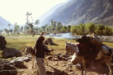 Rahman Baig prepares our horse as we get ready to buy a second pack animal to replace our useless donkeys.